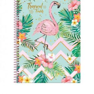 CADERNO 15X1 UNIVERSITARIO CD TROPICAL FEVER 300FLS FORONI 3163236