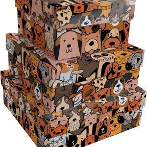 Caixa Presente Up box Quadrada Cães Urbanos Pequena