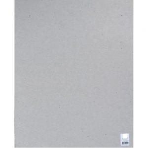 Placa Holler Litoarte 50x80cm 2,8mm PROG008